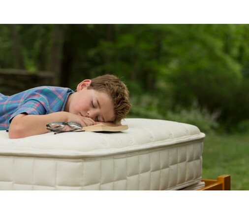 Naturepedic-verse-mattress-1800easybed.com